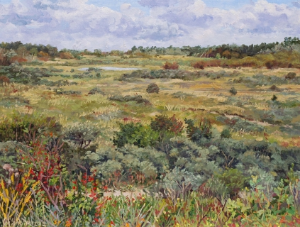 Wei van Brasser - Castricum, olieverf, 32 x 42 cm, huile, 9/2012, Castricum