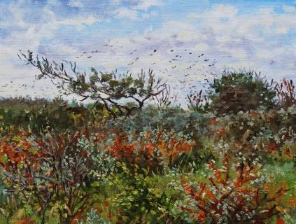 Duinen bij Castricum, olieverf, 19 x 25 cm, 10/2013, huile, Dunes à Castricum