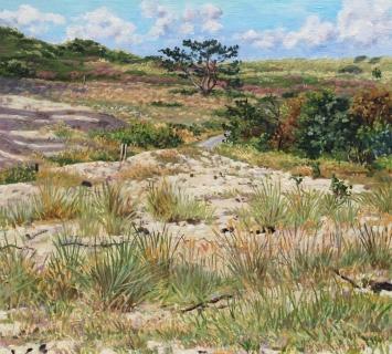 Eendenvlak - Bergen aan Zee, olieverf, 32 x 35 cm, 9/2014, huile, Dunes à Bergen