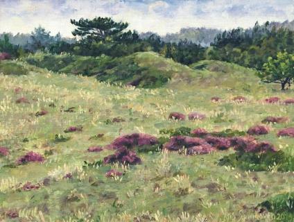 Lange Vlak - Bergen, olieverf, 19 x 25 cm, 9/2014, huile, Bruyère en fleurs à Bergen