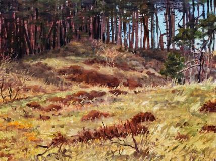 Het duin bij Bergen, olieverf, 19 x 25 cm, 2/2015, huile, Les dunes à Bergen