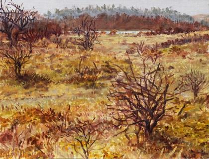 Wei van Brasser - Castricum, olieverf, 19 x 25 cm, 3/2015, huile, Les dunes à Castricum