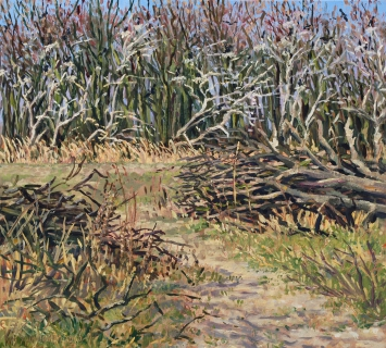 Infiltratiegebied Castricum, olieverf, 29 x 32 cm, 4/2016, huile, Zone d'infiltration à Castricum