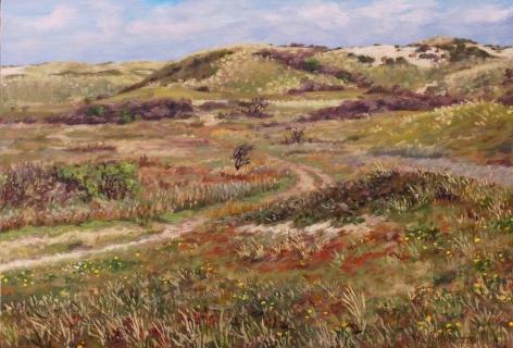 Duin bij Castricum, olieverf, 26 x 38 cm, 5/2016, huile, Les dunes à Castricum